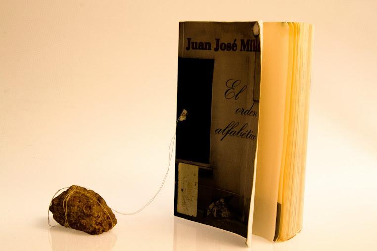 Pol_llibre