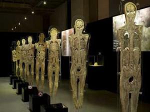 Visita a la exposició Human Bodies