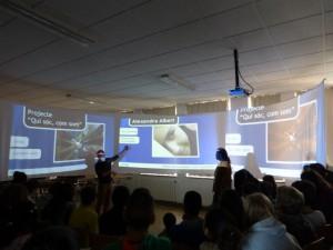 Presentacions orals dels projectes artístics del 1rT